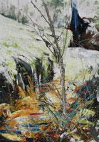 WHISTLEPIPE GULLY by Georga Hayward